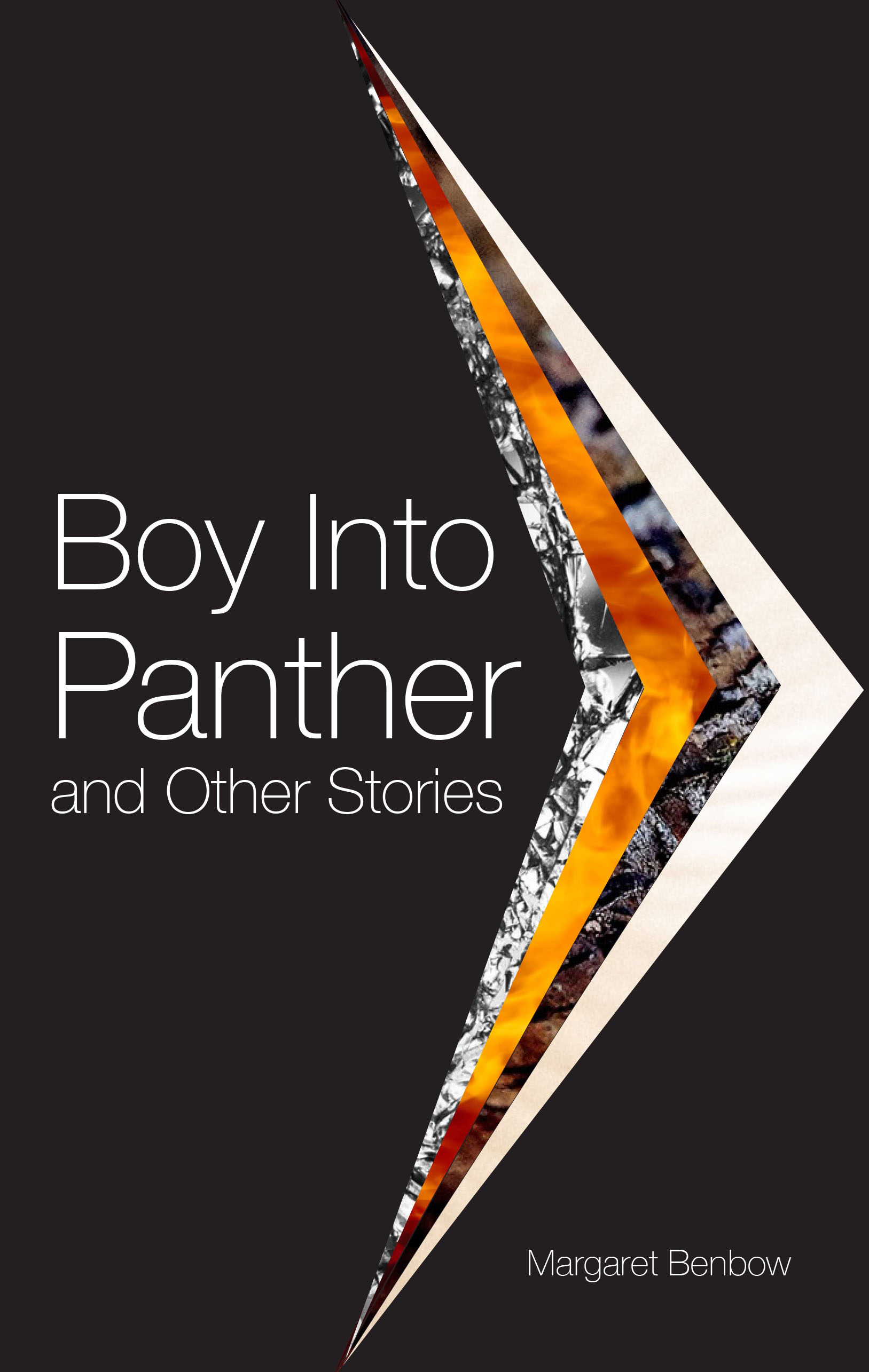 Boy into Panther and Other Stories