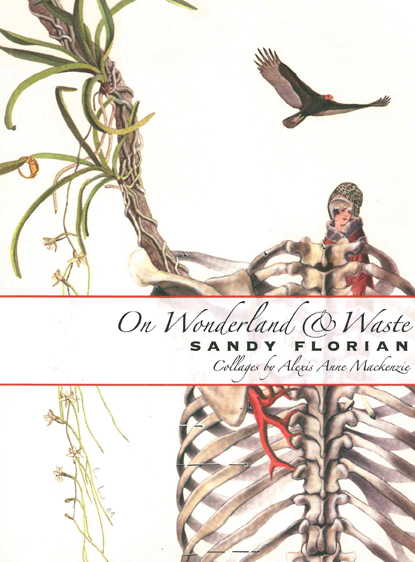 On Wonderland & Waste