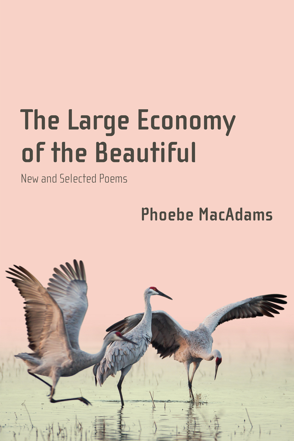 The Large Economy of the Beautiful: New and Selected Poems