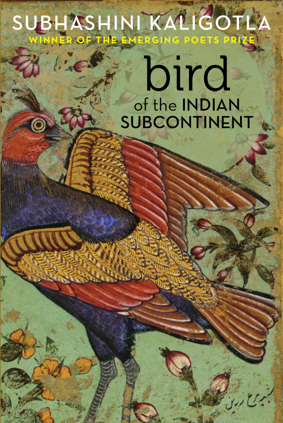 Bird of the Indian Subcontinent