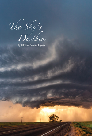 The Sky's Dustbin