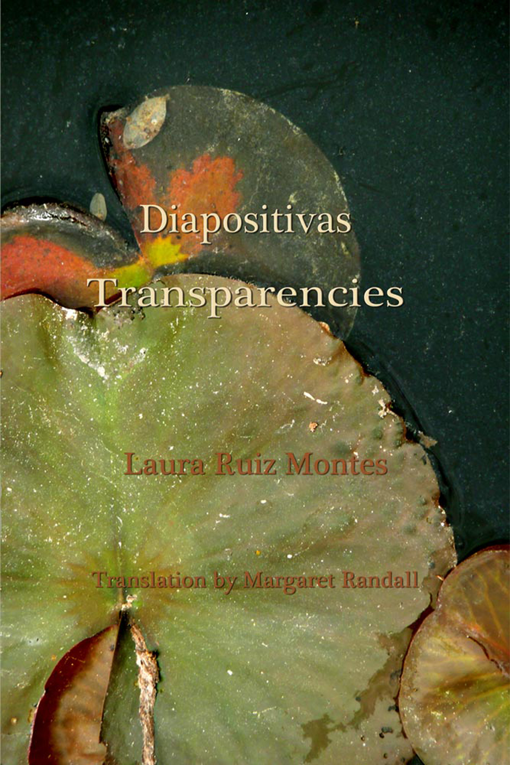 Diapositivas / Transparencies