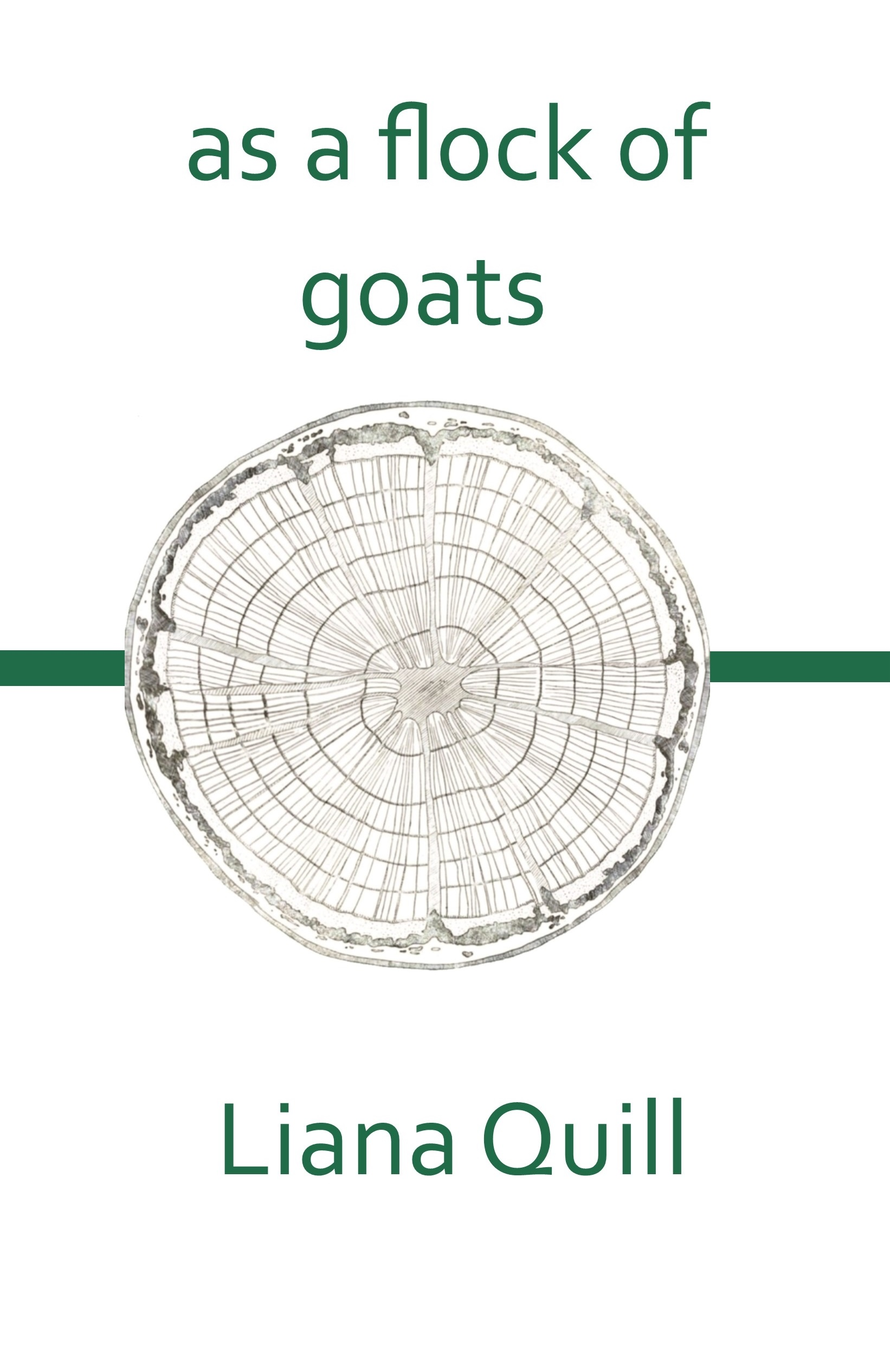 as a flock of goats