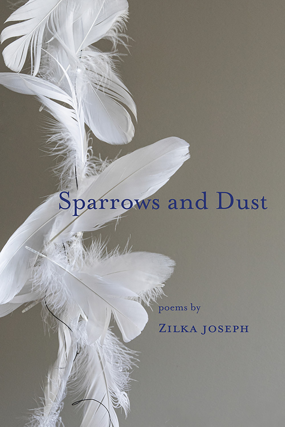Sparrows and Dust