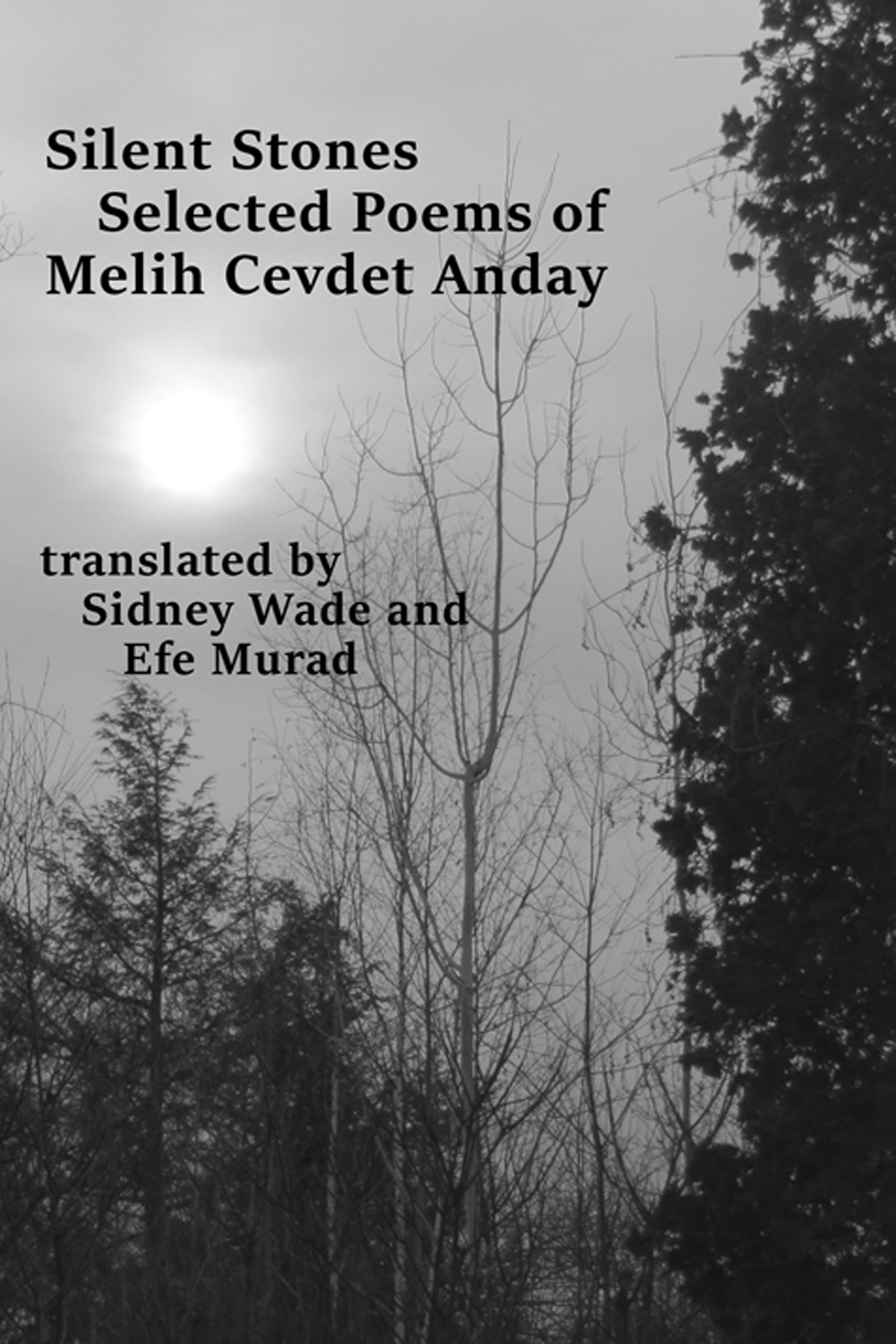 Silent Stones: Selected Poems Of Melih Cevdet Anday
