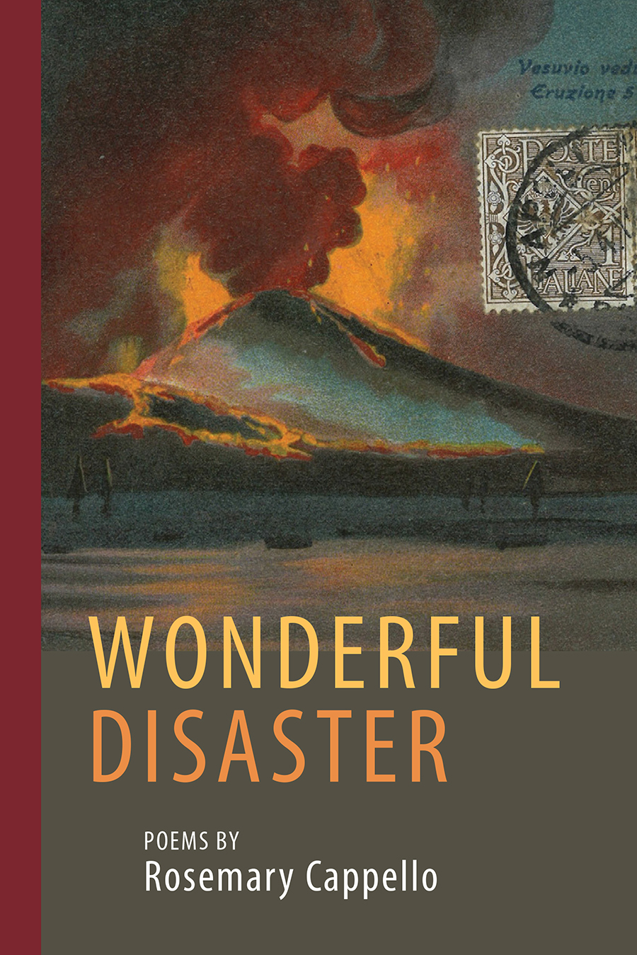 Wonderful Disaster