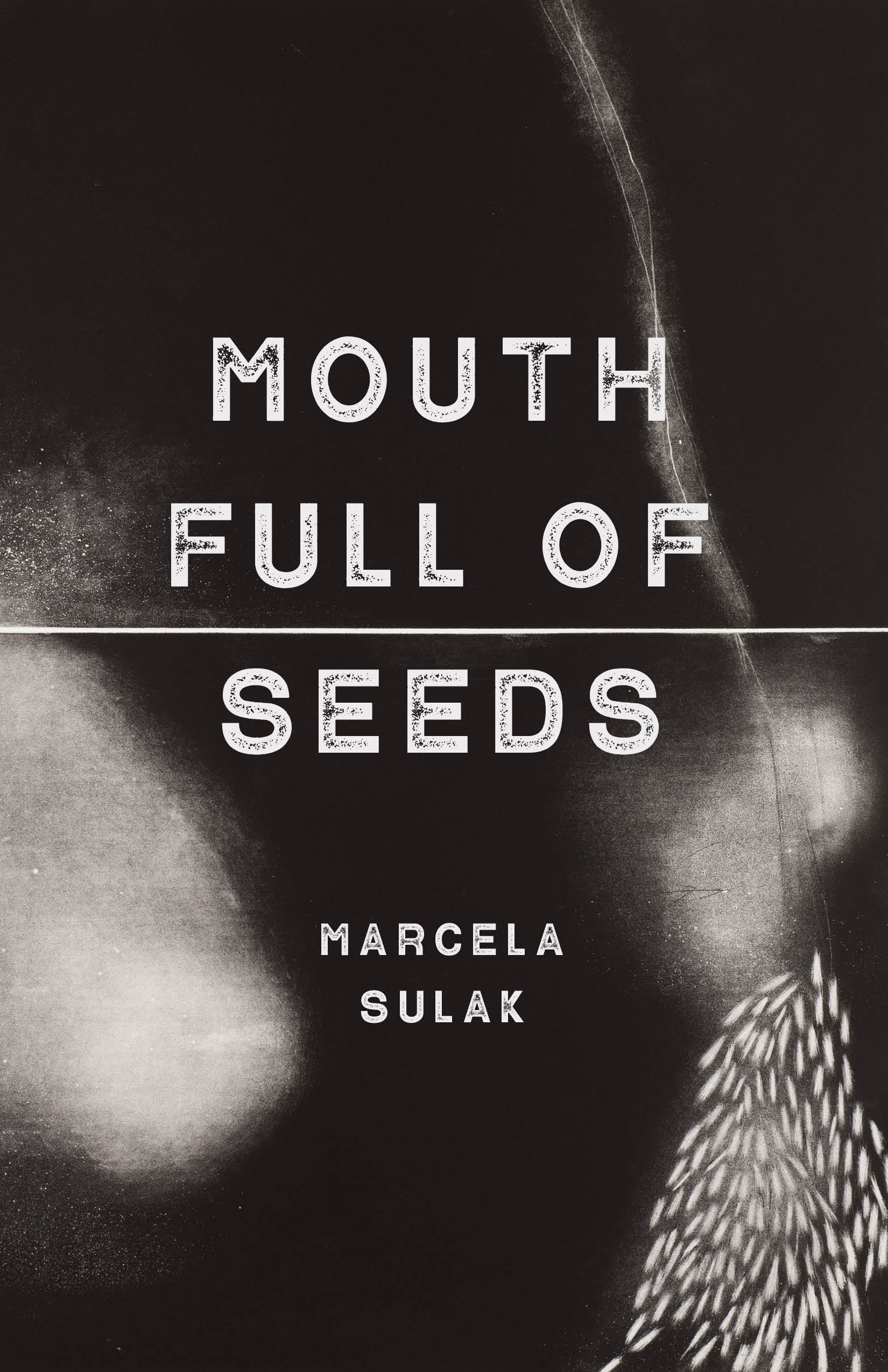 Mouth Full of Seeds