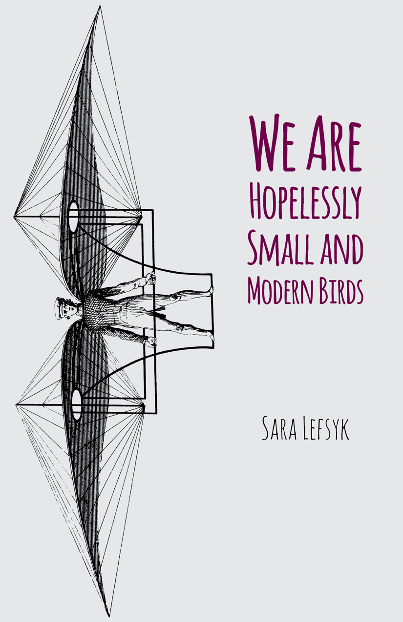 We Are Hopelessly Small and Modern Birds