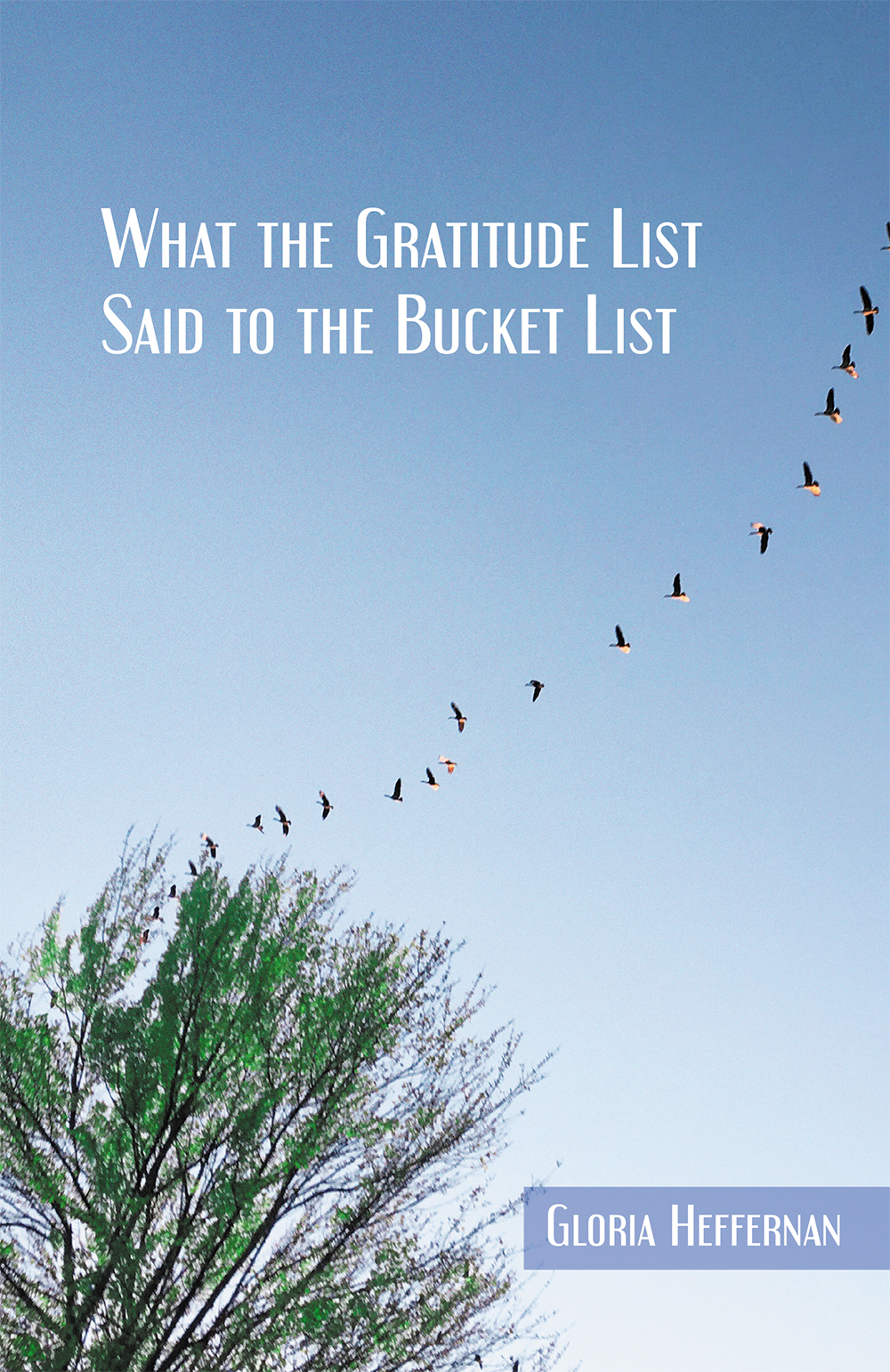 What the Gratitude List Said to the Bucket List