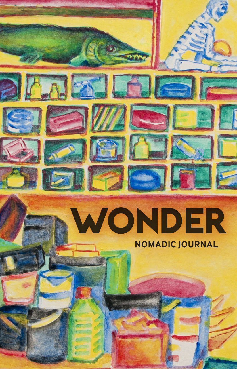 Nomadic Journal: Wonder