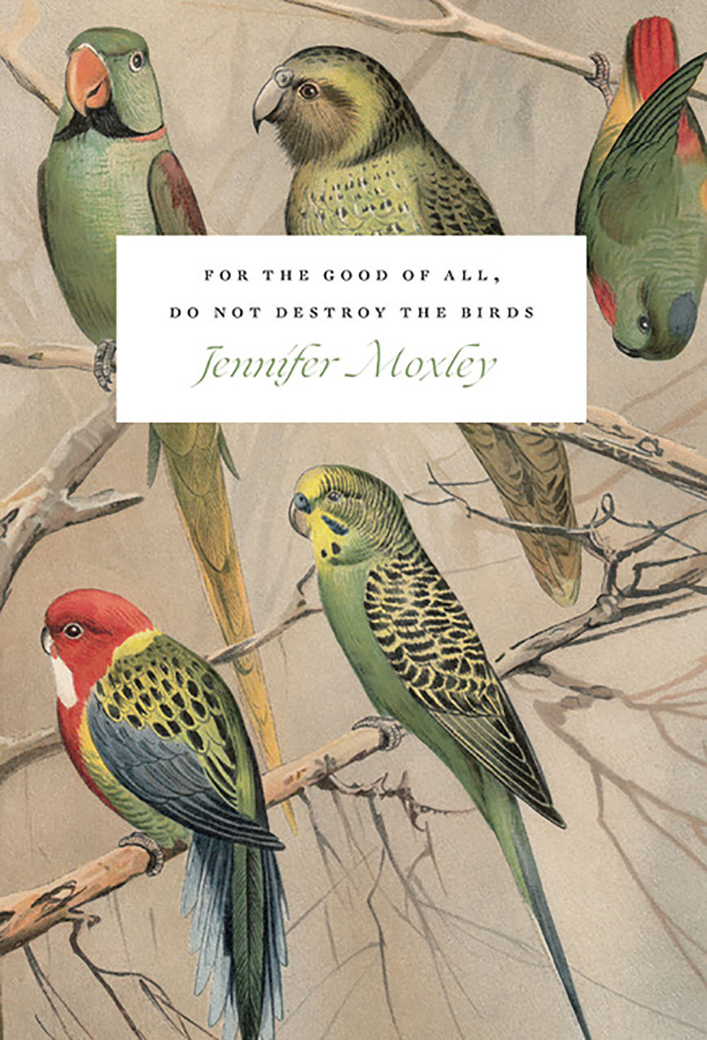 For the Good of All, Do Not Destroy the Birds: Essays