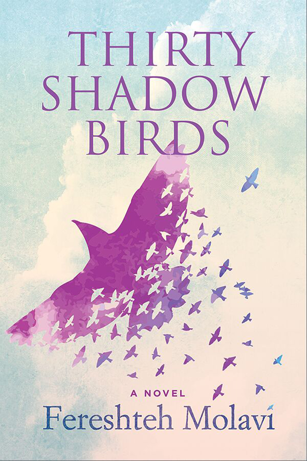 Thirty Shadow Birds