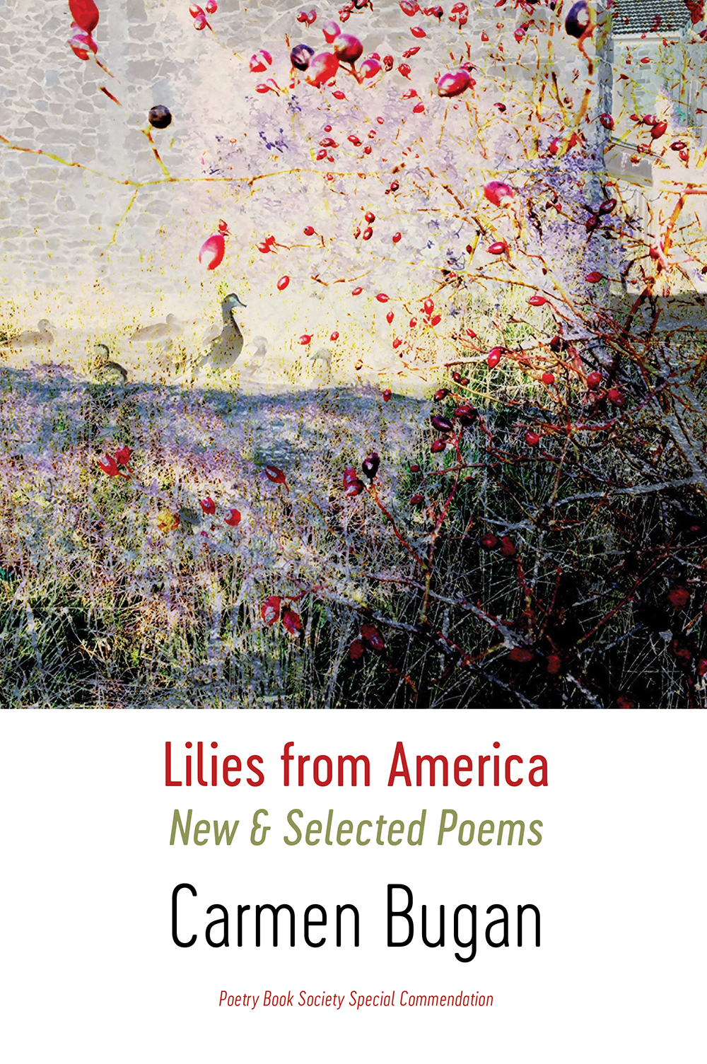 Lilies from America: New & Selected Poems