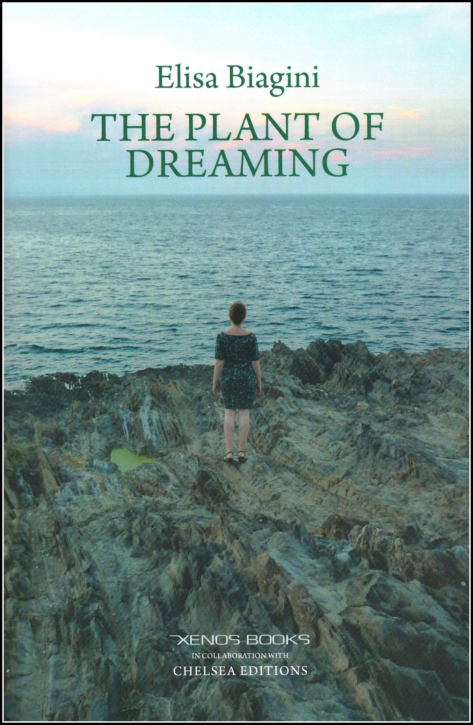 The Plant of Dreaming: Poems