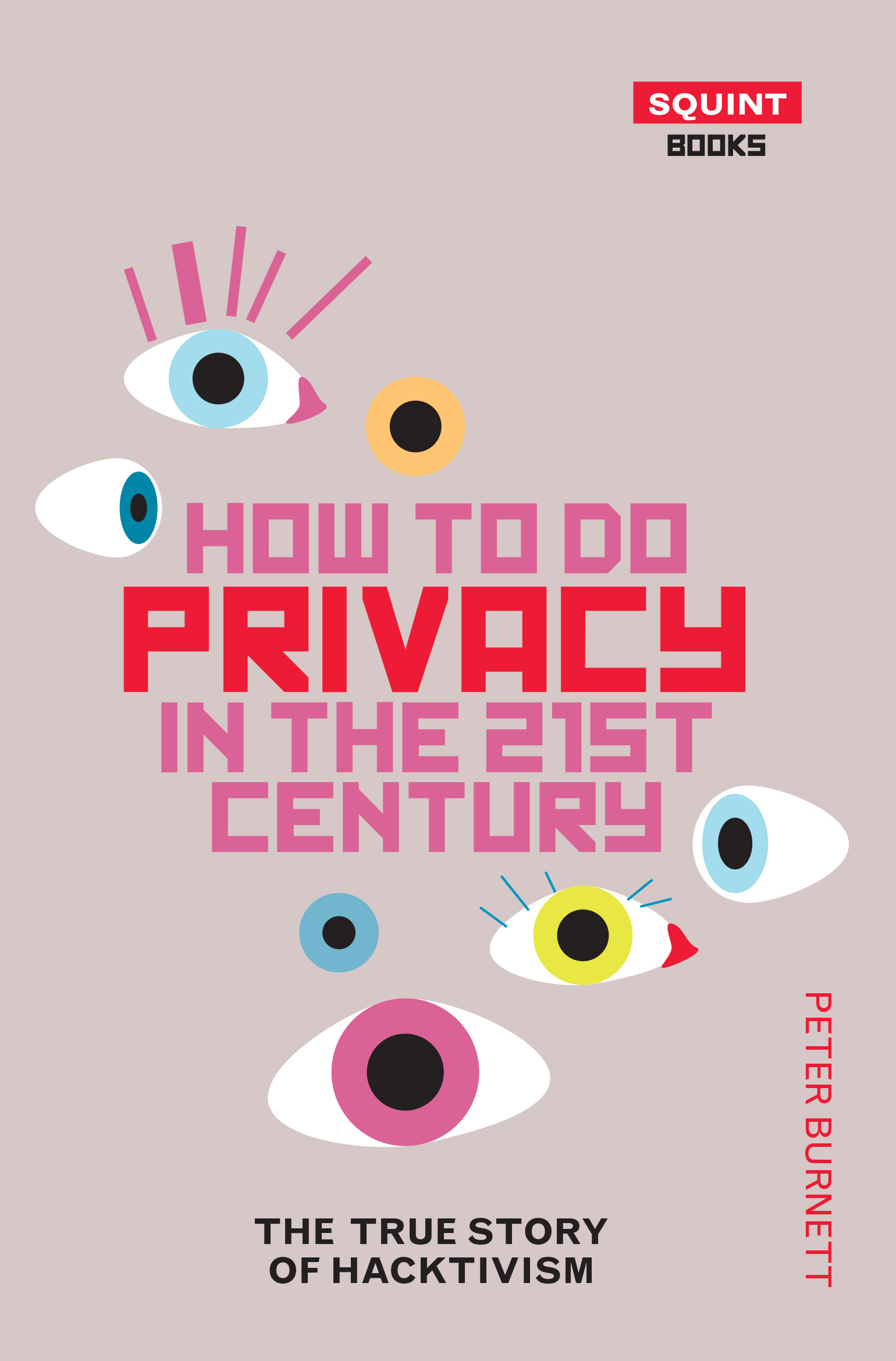 How To Do Privacy In The 21st Century: The True Story of Hacktivism