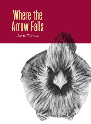 Where the Arrow Falls