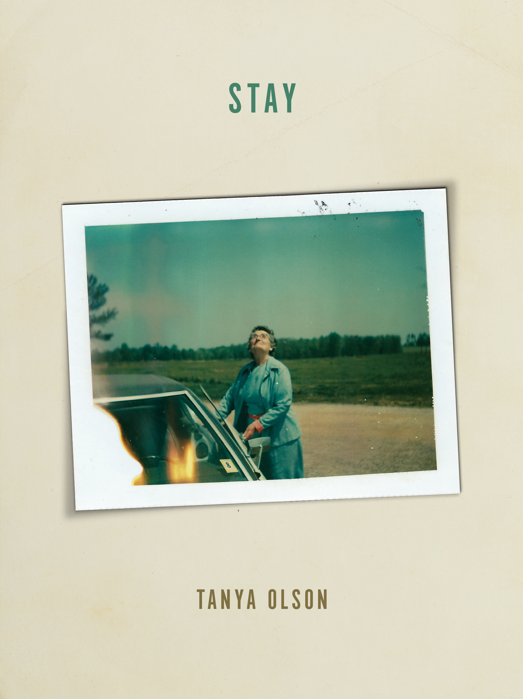 [book cover] stay