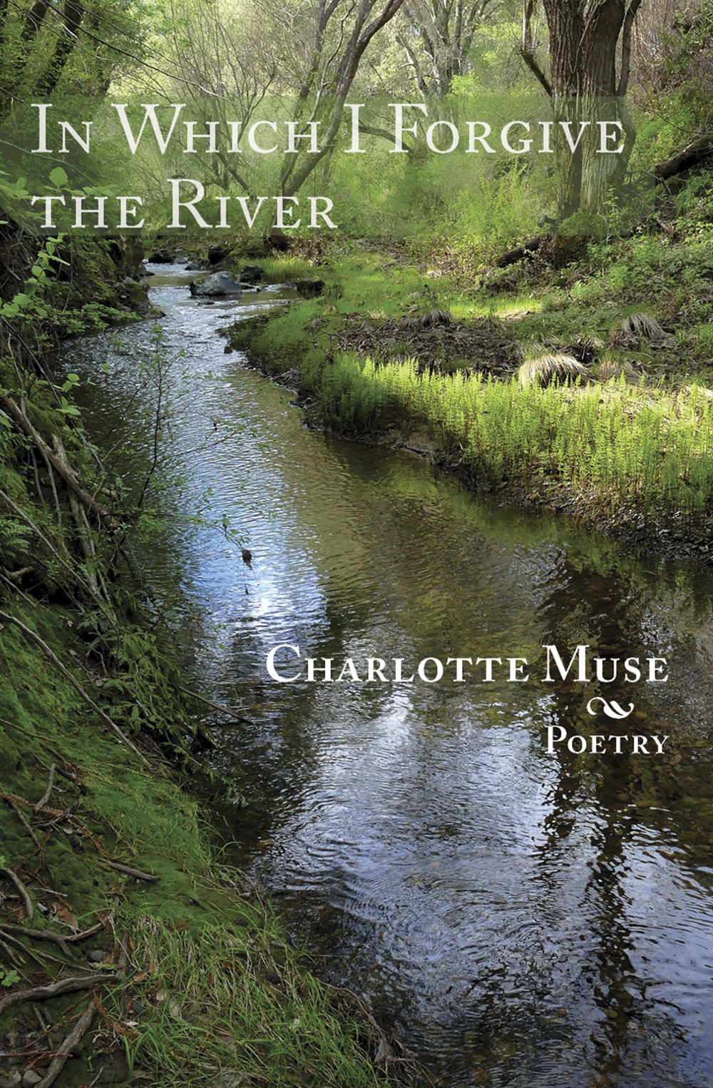 In Which I Forgive the River