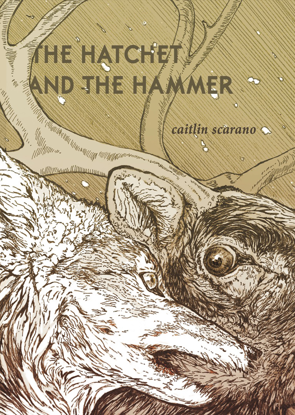 The Hatchet and the Hammer