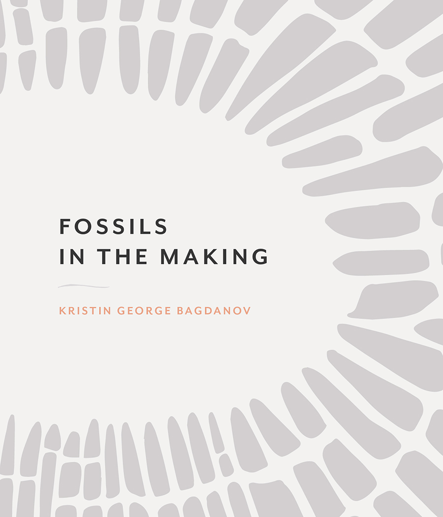 Fossils in the Making