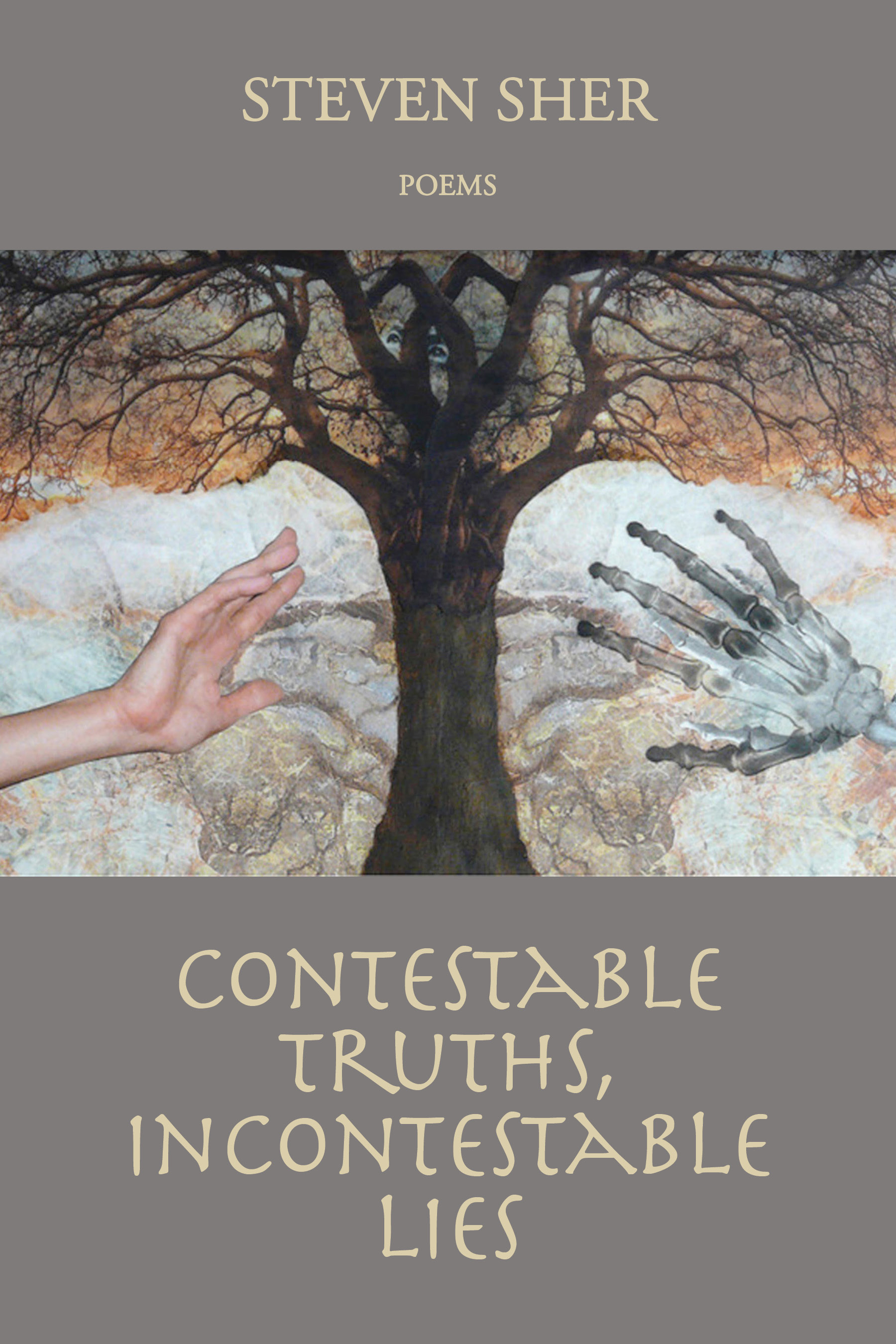 Contestable Truths, Incontestable Lies