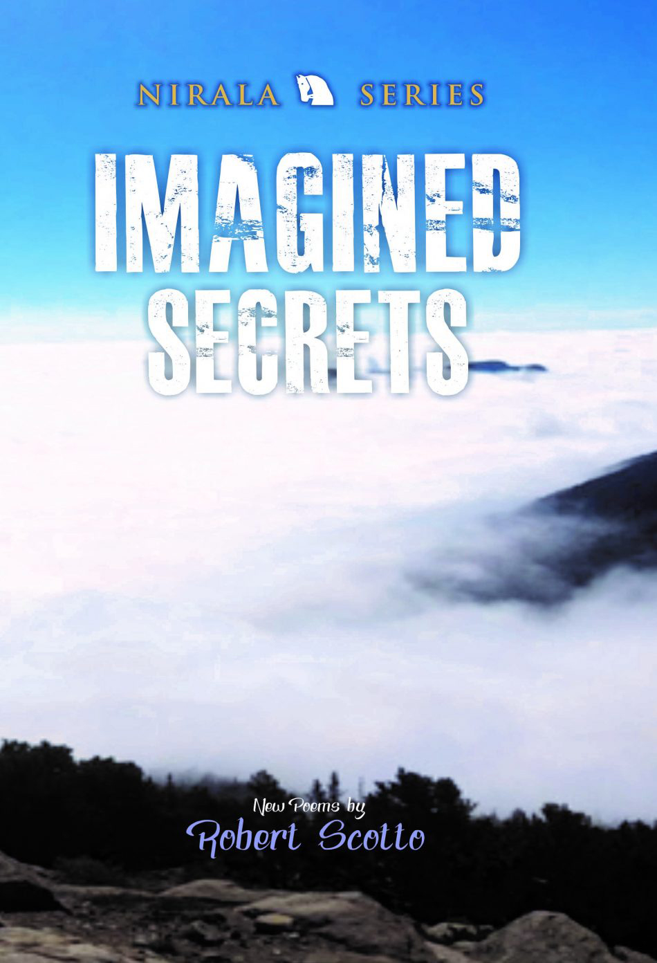 Imagined Secrets: New Poems