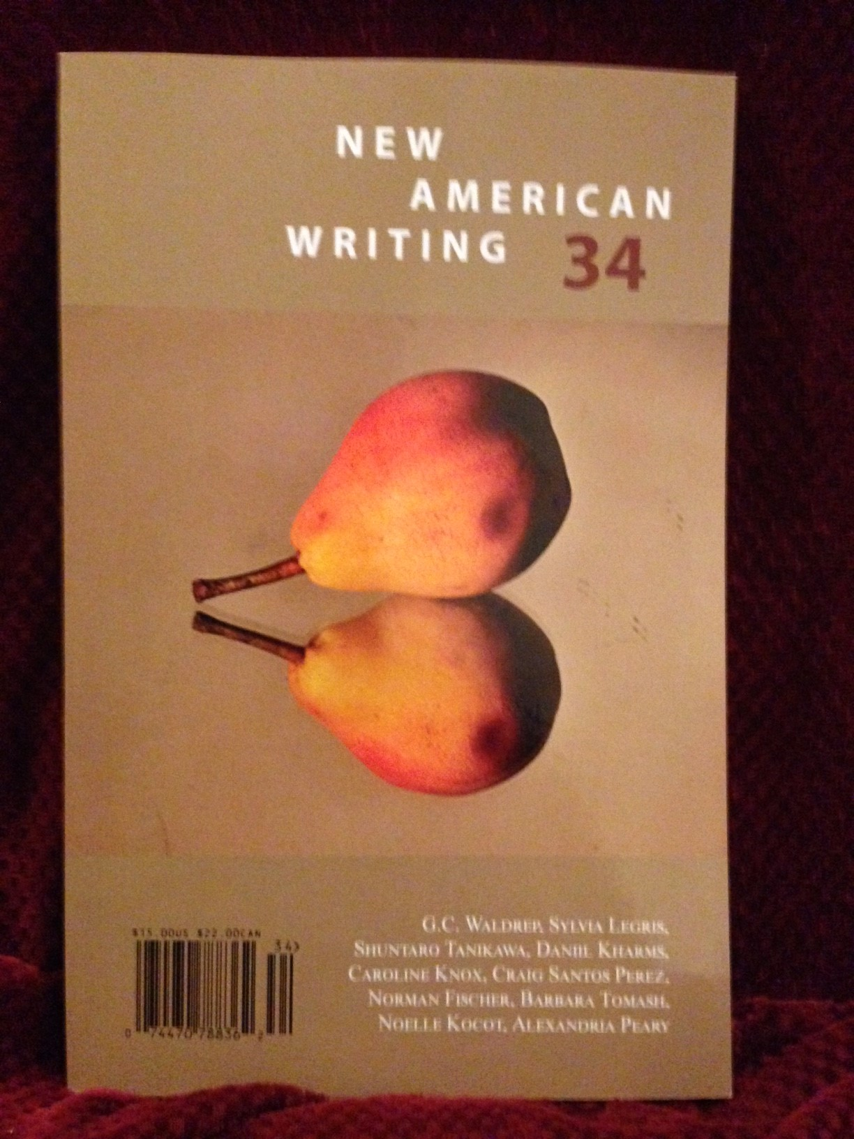 New American Writing 34