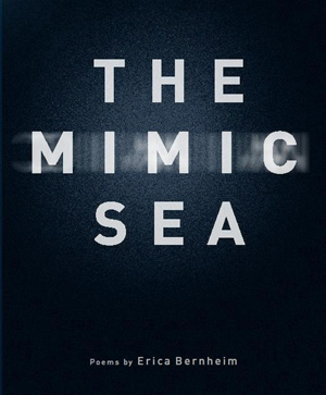The Mimic Sea