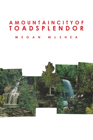 A Mountain City of Toad Splendor