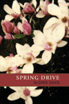 Spring Drive