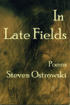 In Late Fields, Steven Ostrowski