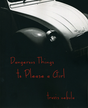 Dangerous Things To Please a Girl Travis Cebula