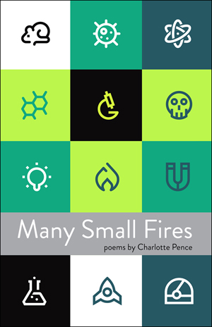 Many Small Fires Charlotte Pence