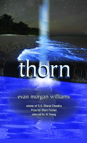 Thorn: Short Stories Evan Morgan Williams