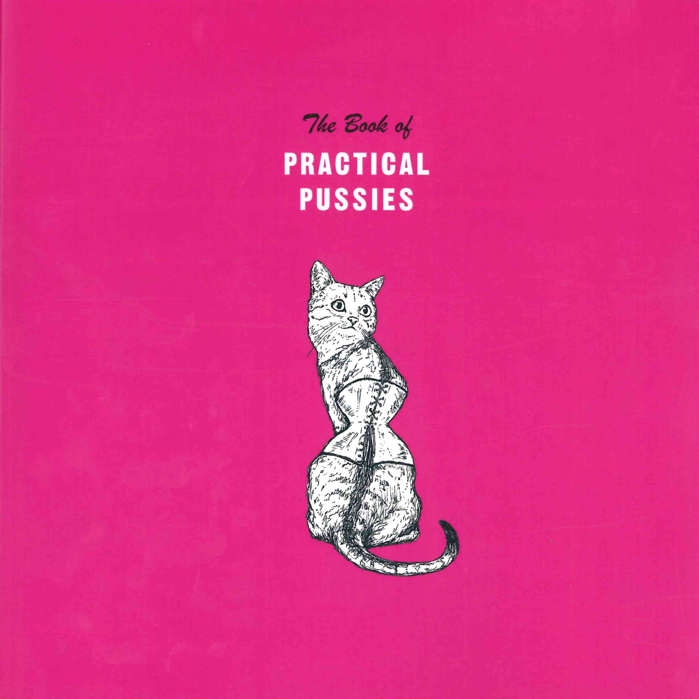 The Book of Practical Pussies | Michelle Rollman | Krupskaya