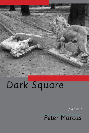 Dark Square, Peter Marcus
