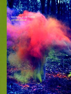 after-cave | michelle detorie | ahsahta press