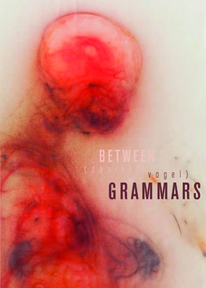 Between Grammars Danielle Vogel