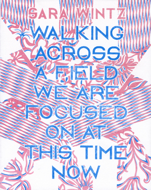 Walking Across a Field We Are Focused on at This Time Now | Sara Wintz | Ugly Duckling Presse